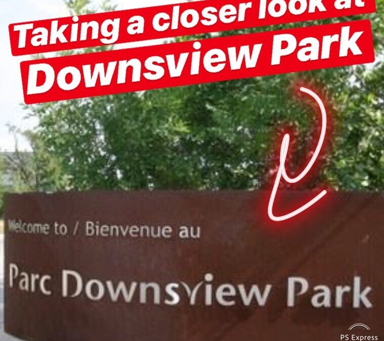 Taking a Closer Look at Downsview Park